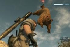 В игре вам также предстоит охотится на редких и опасных животных.