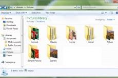 Windows 7. Общий вид папки