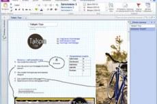 Microsоft Office Professional 2010. Профессиональный. Систематизация практически любых проектов в одном удобном месте