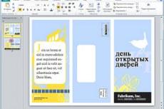 Microsоft Office Professional 2010. Профессиональный. Создание профессионально оформленных маркетинговых материалов